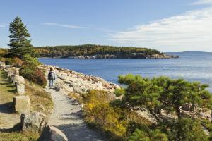 Ocean Path Acadia National Park